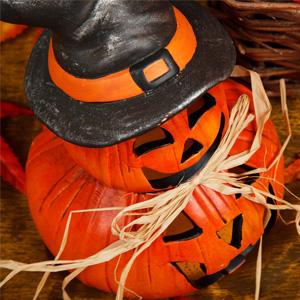 Master Halloween 2014 master halloween 2014, szkoła języków obych opole