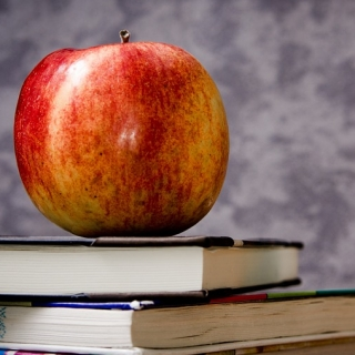 Harmonogram rozpoczęcia kursów językowych apple-256261_960_720