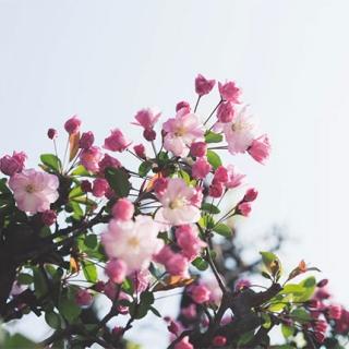 Weekend majowy spring